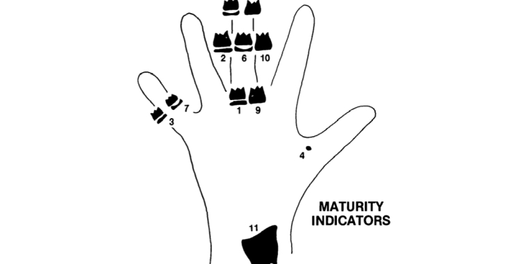 Fishman's Maturity Indicators